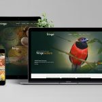 Karuna Singapore responsive web design - Rainforest World Music Festival Fringe | Rwmffringe